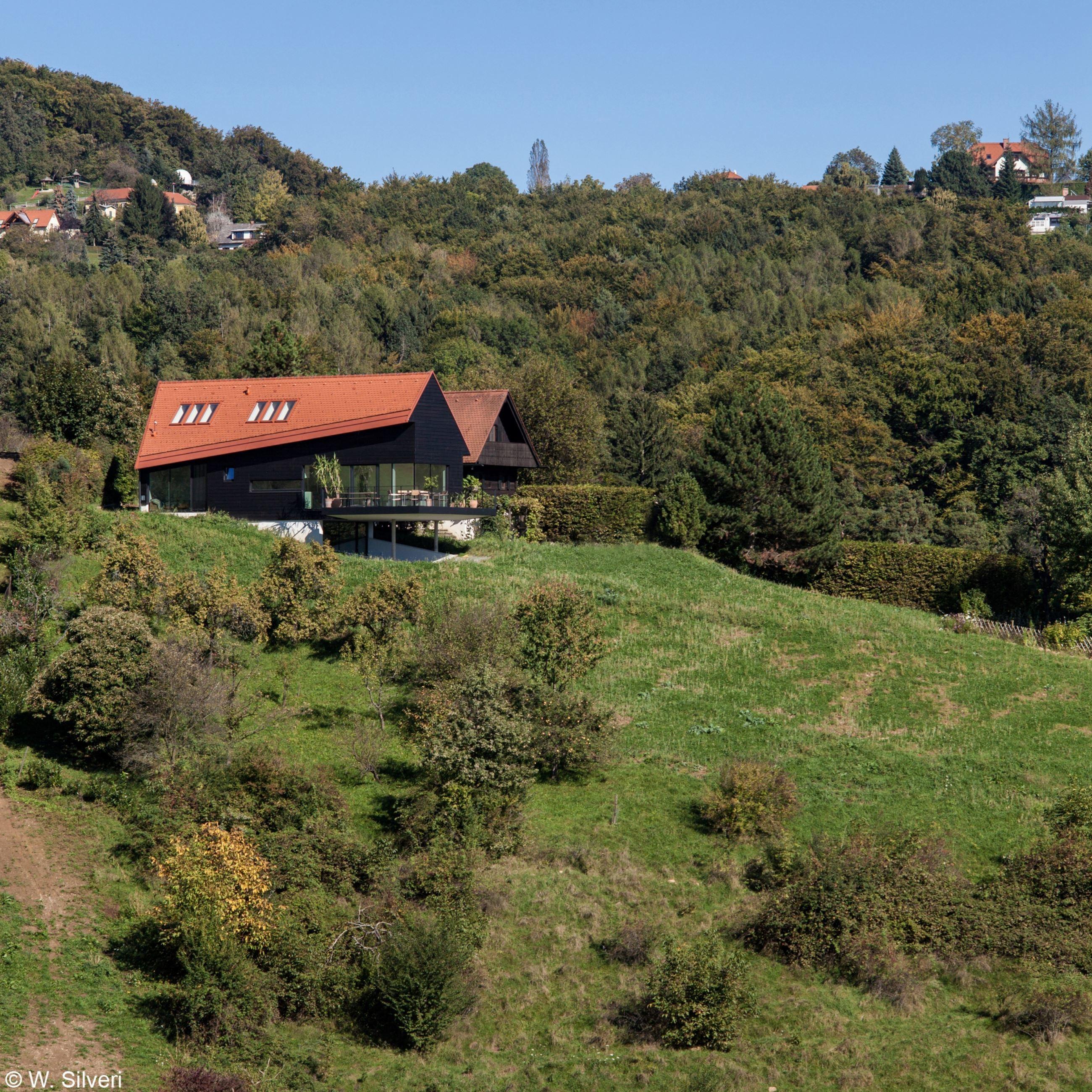 Haus Oberberg农场扩建中木结构和斜顶天窗锦上添花
