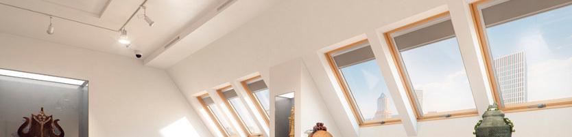 FAKRO法克罗屋顶天窗:防盗安全旋转窗款
